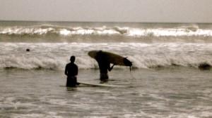 bali, surfing